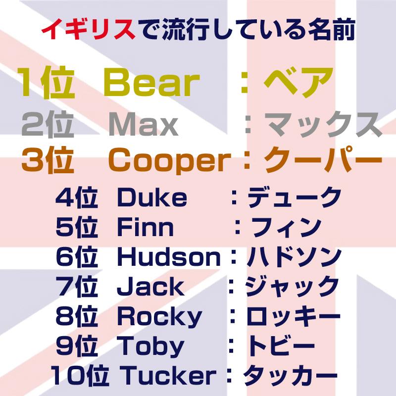 犬の名前の候補が見つかる オス メス別ランキングや外国の名前一覧